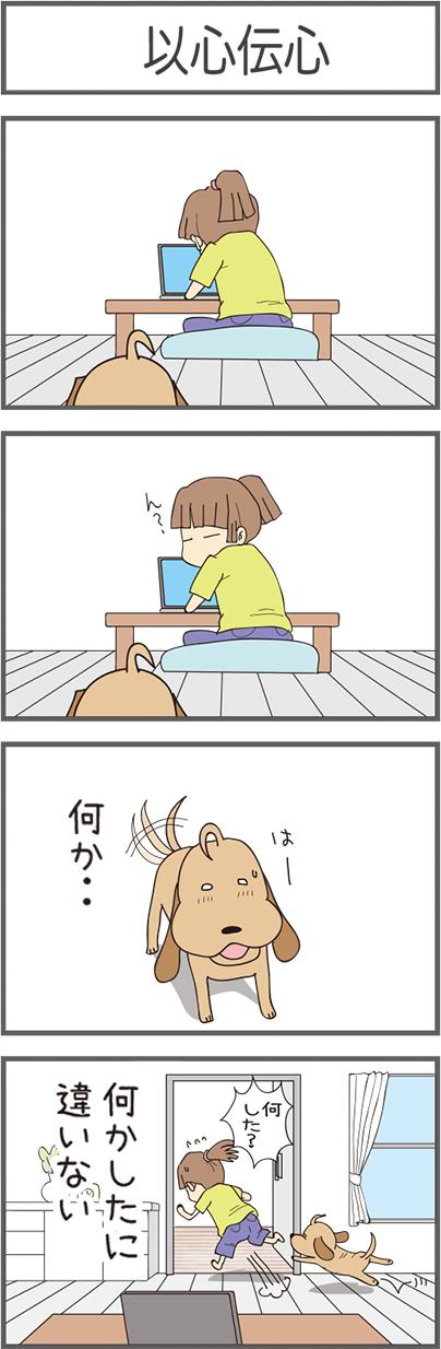 wan922